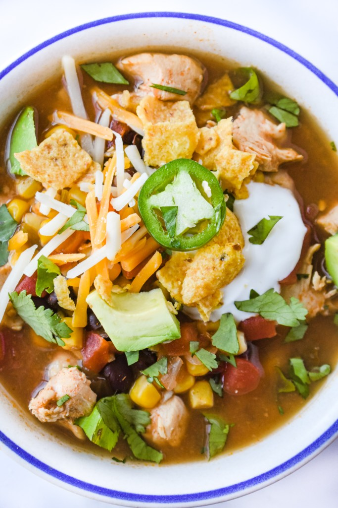 Bowl of Mexican Chicken Soup