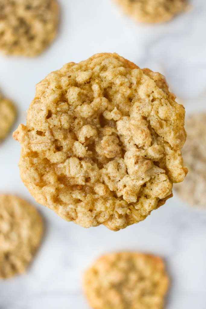 Chewy Oatmeal Cookie Closeup