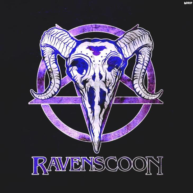 Ravenscoon Logo Designed by DRIP Graphics