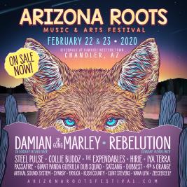 Arizona Roots 2020 Lineup