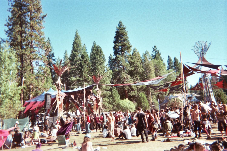 Field Stage