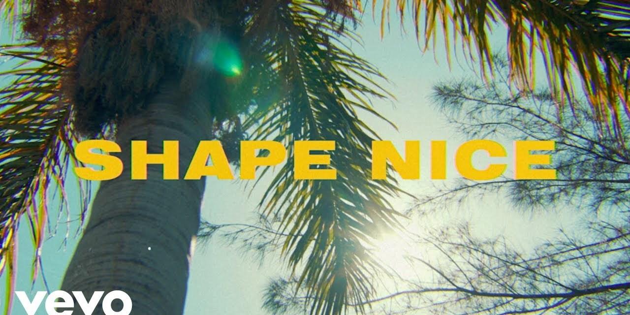 Afro B, Vybz Kartel, Dre Skull – Shape Nice – Official Music Video