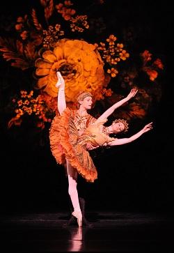 Australian Ballet dancers Lucinda Dunn and Paul Knobloch