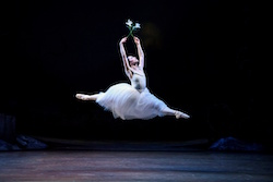 Dancer Lucy Green as Giselle in RNZB's 'Giselle'. Photo by Bill Cooper.