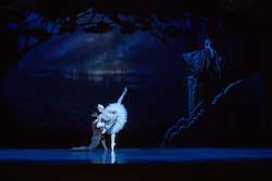 Yanela Pinera and Joel Woellner in Queensland Ballet's 'Swan Lake'. Photo by David Kelly.