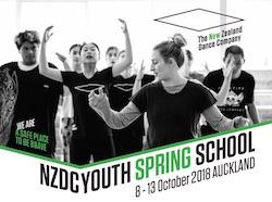 NZDC 2018 Spring School.