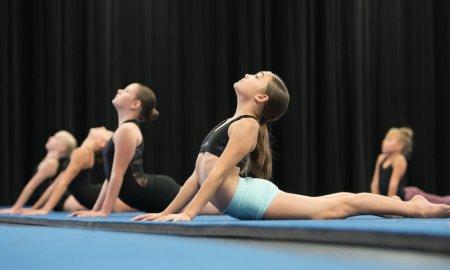 Acrobatic Arts. Photo courtesy of Mandy Yip.