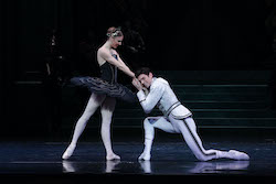 Andrew Killian (right) in The Australian Ballet's 'Swan Lake'. Photo by Jeff Busby.