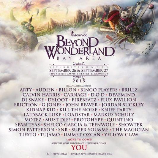beyondwonderlans_result