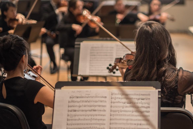 The Oistrakh Symphony of Chicago (Photo by Johnny Nevin)
