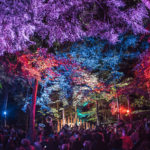 A guide to Elements Festival's 'Wellnest' activities03 ElementsLakewood2017 Selects Photo JulianCassady1