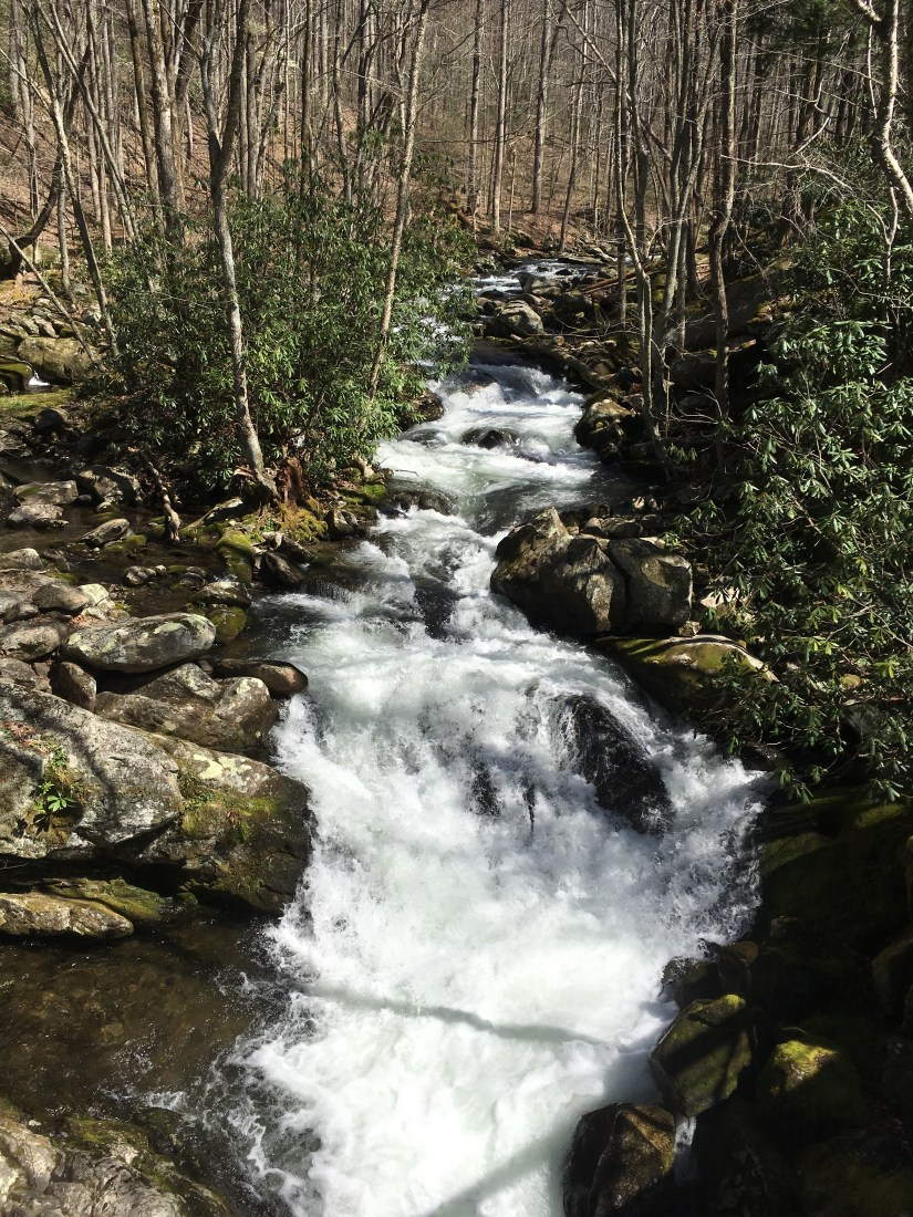 Rushing Water Seasons in the Smokies