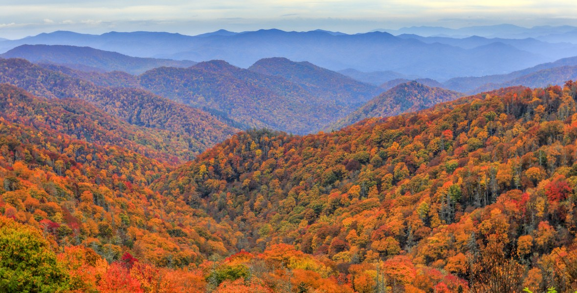 Fall Scene, Seasons in the Smokies