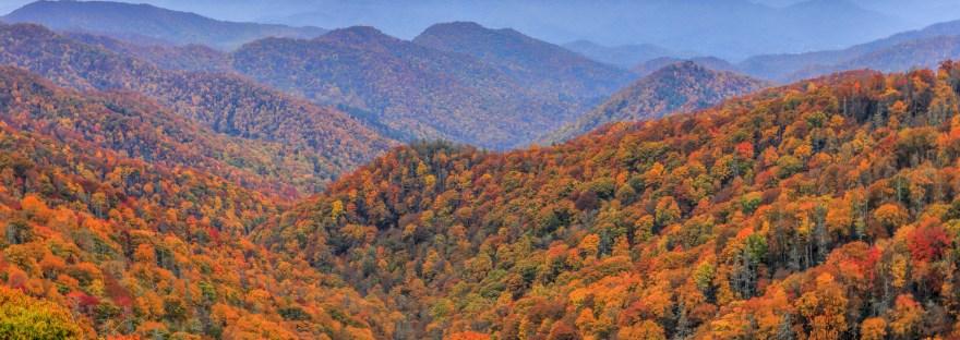 Fall Scene, Seasons in the Smokies