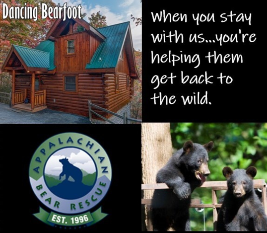 Dancing-bearfoot-appalachian-bear-rescue