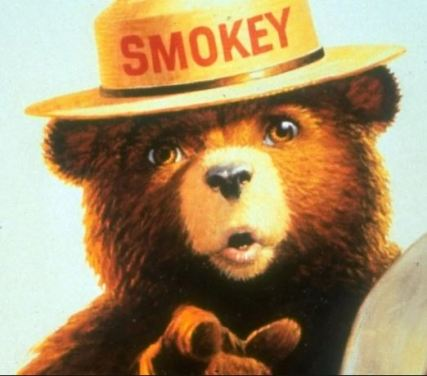 smoky-bear