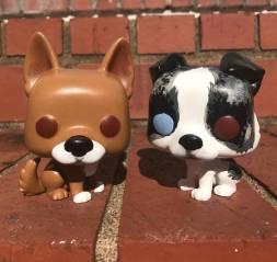 doggopops
