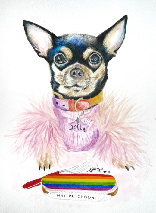 Dolly Pawton the Chihuahua