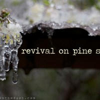 revival on pine street