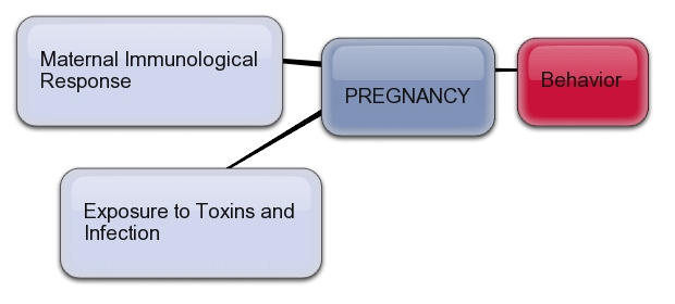 Behavior Affects Pregnancy Outcome