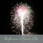 Reflections Of 2016, The Good, Bad & The Ugly