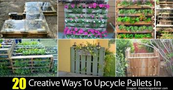 20-pallets-upcycle-63020151482