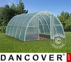 Polytunnel Greenhouse 3x10x1.9 m, 30 m², Transparent