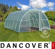 Polytunnel Greenhouse 3x6x1,9 m, Transparent