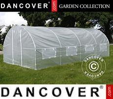 Polytunnel Greenhouse 3x6x2 m, 18 m², Transparent