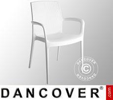 Stuhl mit Armlehnen, Boheme, Weiß 6 Stück