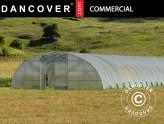 invernaderos, invernadero túnel de calidad comercial, invernadero túnel comercial, invernadero túnel, Invernaderos túnel Invernaderos, túnel, invernadero clásico, invernadero túnel comercial, túneles de invernadero, invernadero túnel profesionales, Dancover, Dancovershop