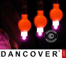 Luci LED per lanterne di carta, 20 pezzi, rosa