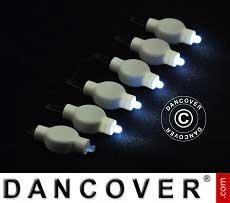 Luci LED per lanterne di carta, 20 pezzi, bianco