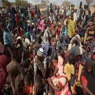 Borno-IDPs-600x375