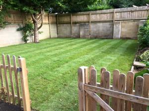 New lawn and garden fence, Melksham, Dan Davies Landscaping