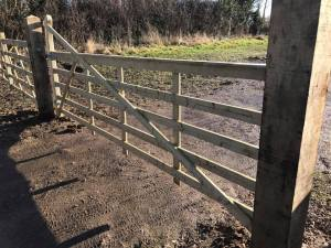 New wooden gate installed by Dan Davies Landscaping in Wiltshire