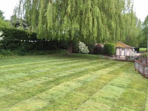 Large turfed lawn and fencing