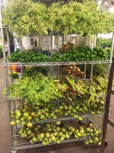 This cart from the San Francisco Flower Mart holds such a wonderful selection of greens