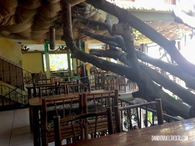 dandovueltascr-treehouse-2