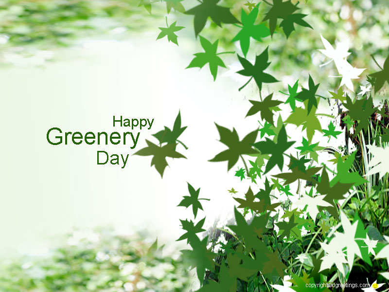 green02-8001