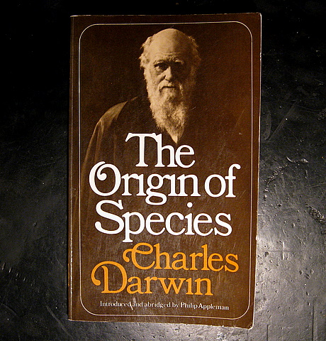 darwin and origin of species Darwin's central issues focused on the origin of species the origin of species by means of natural selection was the actual thesis of the book the origin of species by means of natural selection was the actual thesis of the book.