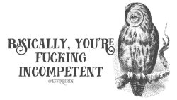 "Effinbirds: ""Basically you're fucking incompetent"""