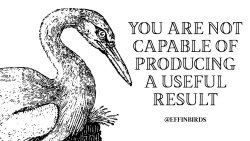 "EffinBirds: ""You are not capable of producing a useful result"""