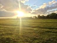 Wiesen, Sonne, Wolken, in Seefeld an der Nordsee