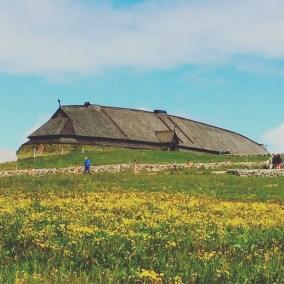 Wikingerhaus