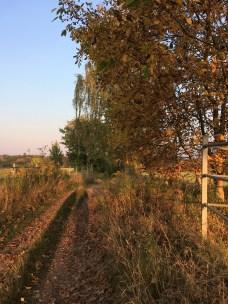 Herbst in Görlitz