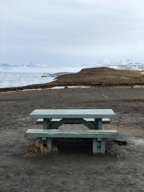 Blick über den Þingvallavatn