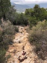 Wanderung - ein Weg oder Wasserrinne?