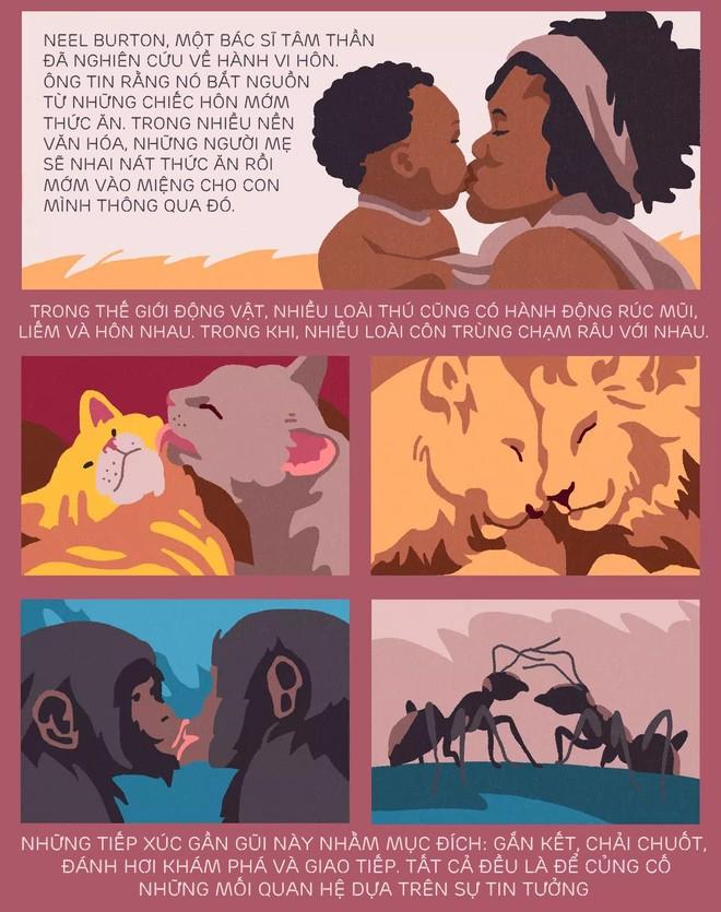 [Infographic] Nụ hôn bắt nguồn từ đâu? Tᾳi sao chύng ta hôn nhau và khoa học phίa sau mọi nụ hôn - Ảnh 3.