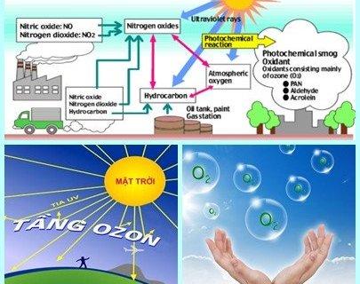 Phân biệt tầng ozon bảo vệ và khi sinh ra trên mặt đất